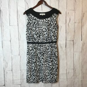 LOFT   Women's Size M   Black/White Knit Dress